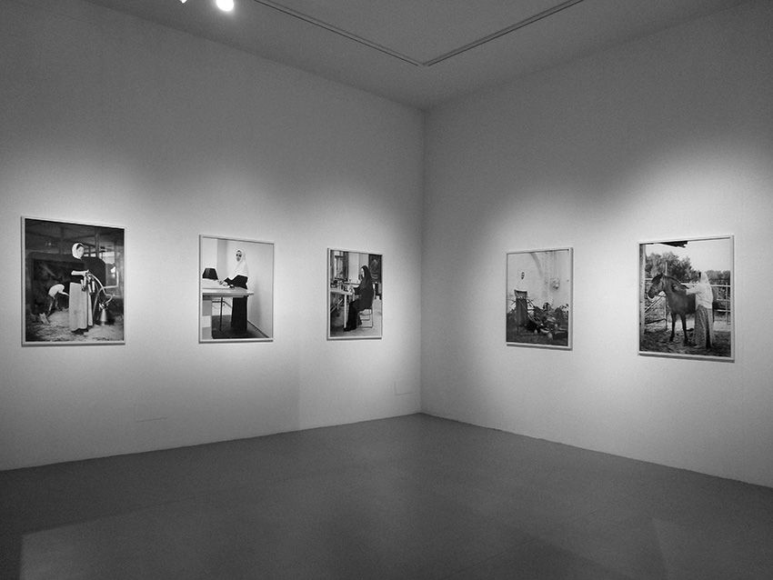 Anastasia Khoroshilova, The Obedient, Laura Bulian Gallery, Milan, 2012